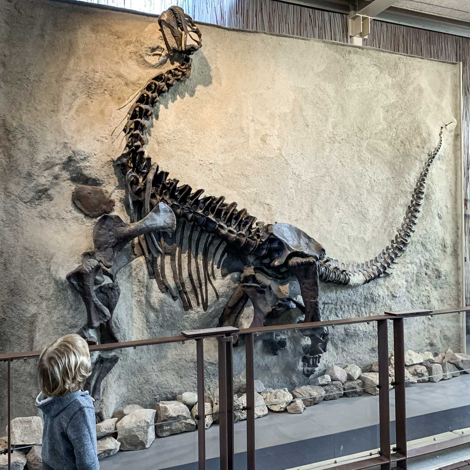 Vernal – Utah's Dinosaurland – Places to Hike, Camp and Visit!